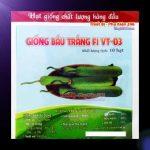 ca-canh-thuy-sinh-sinh-vat-canh-thu-nuoi-asda-la-han-rong-koi-phu-kien-ca-canh-phu-kien-thuy-sinh-do-choi-ca-canh-thuy-sinh-thuc-an-ca-canh-vat-nuoi-may-bom-ca-bien-cham-soc-cay-canh-815sfa7757557364ca-canh-thuy-sinh-sinh-vat-canh-thu-nuoi-asda-la-han-rong-koi-phu-kien-ca-canh-phu-kien-thuy-sinh-do-choi-ca-canh-thuy-sinh-thuc-an-ca-canh-vat-nuoi-may-bom-ca-bien-cham-soc-cay-canh-815sfa7757557364